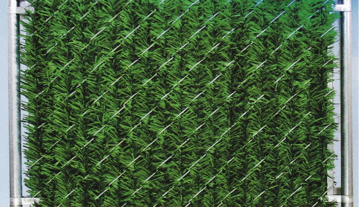 10' Chain Link Fence Forevergreen Hedge Slats | Privacy Slat King